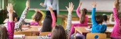 Children raise their hands in question
