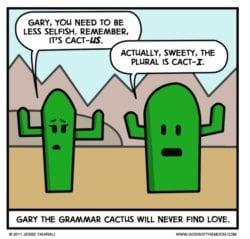 Gary the grammar cactus will never find love